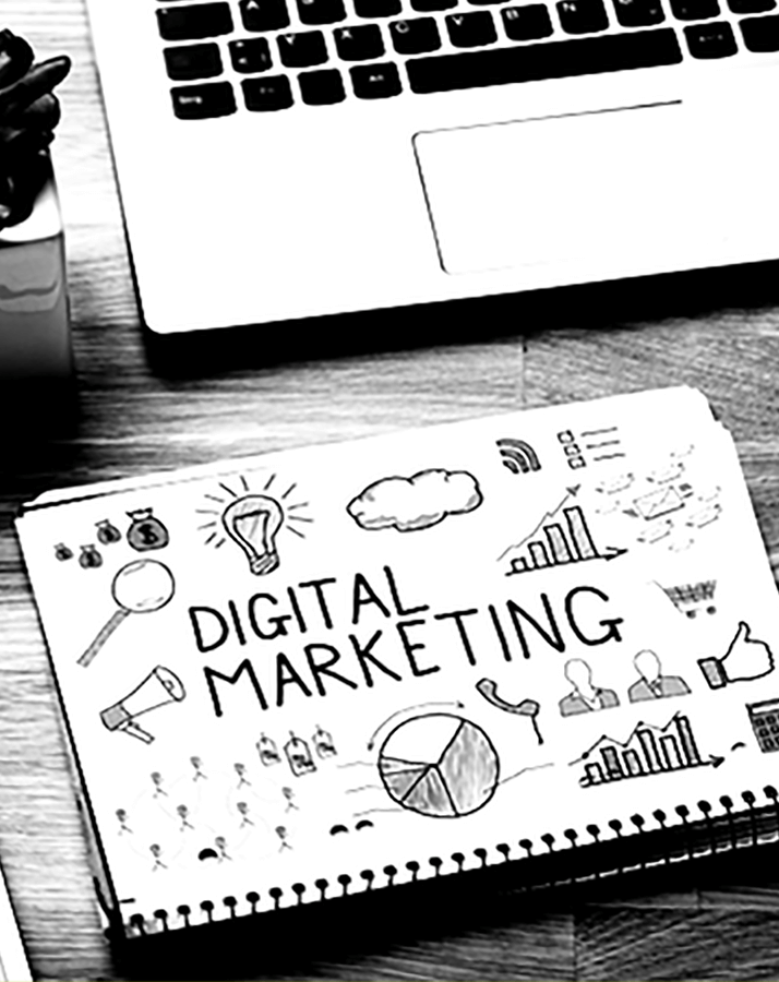 Strategie di digital marketing a Fidenza, Parma e Piacenza